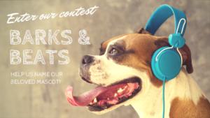 Barks & Beats Blog Header